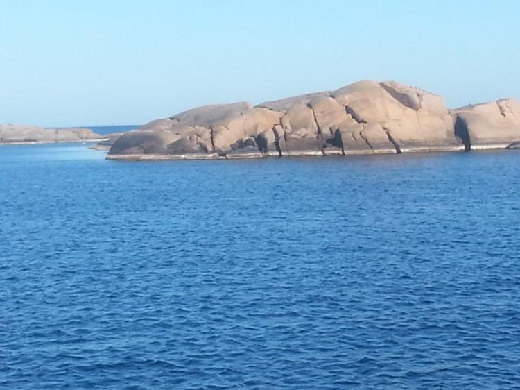 A Rock Island One of many, many, many...
