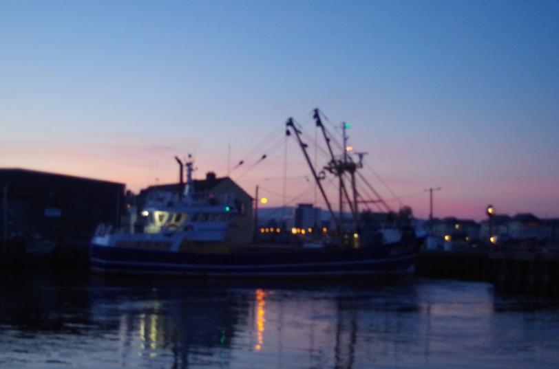 Trawler unloading in Arklow