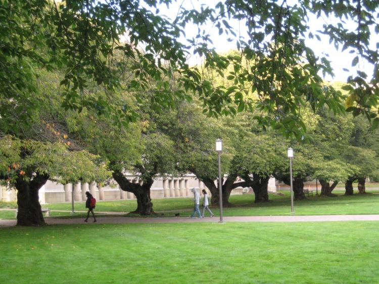 The University of Washington, the Quad