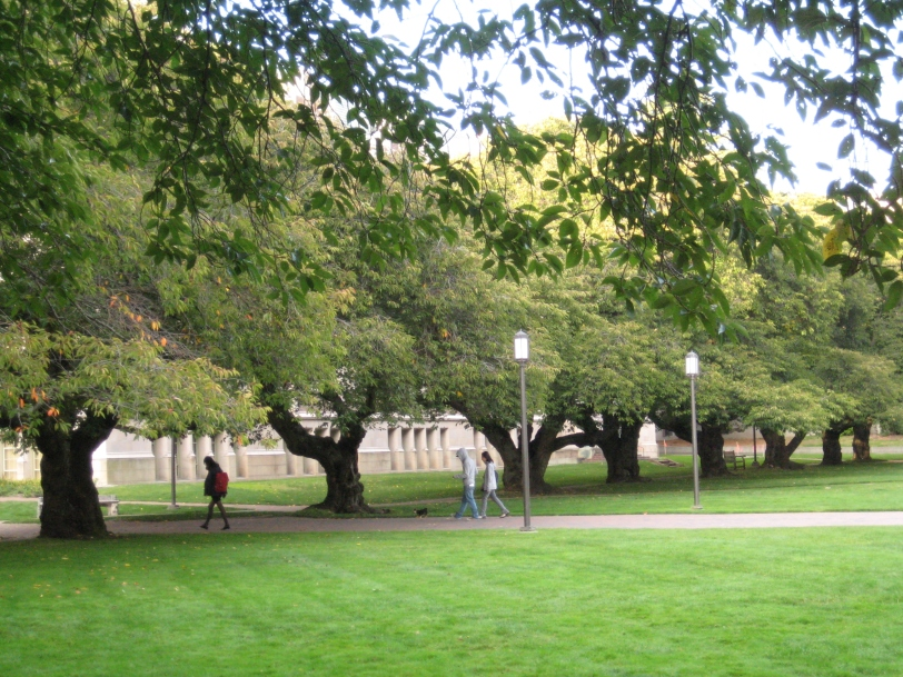 The University of Washington, the Quad