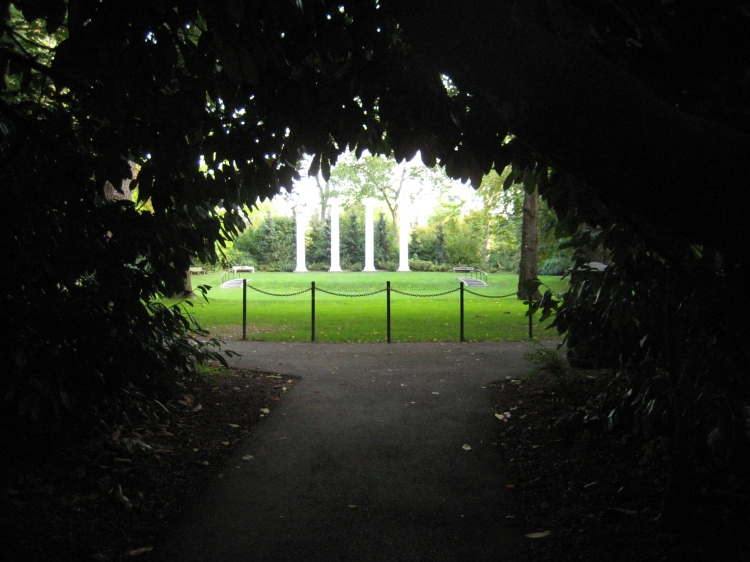 The University of Washington, the Columns Grove