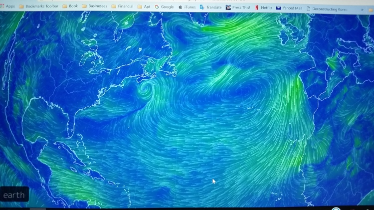The Atlantic Trade Winds