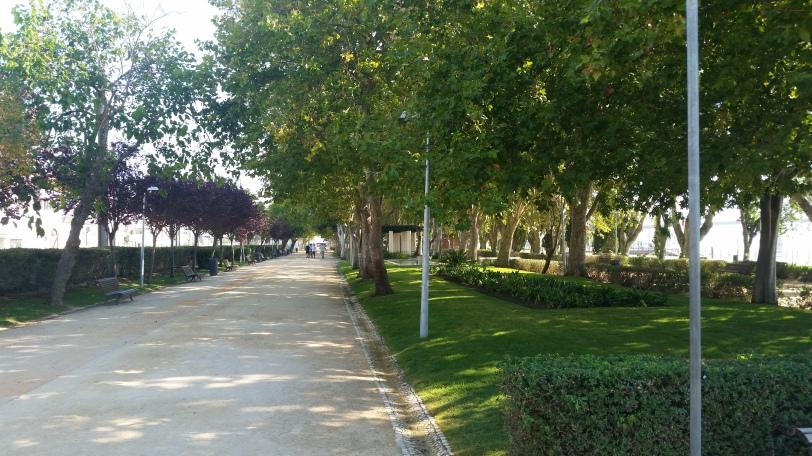 The Park next to Dauntless