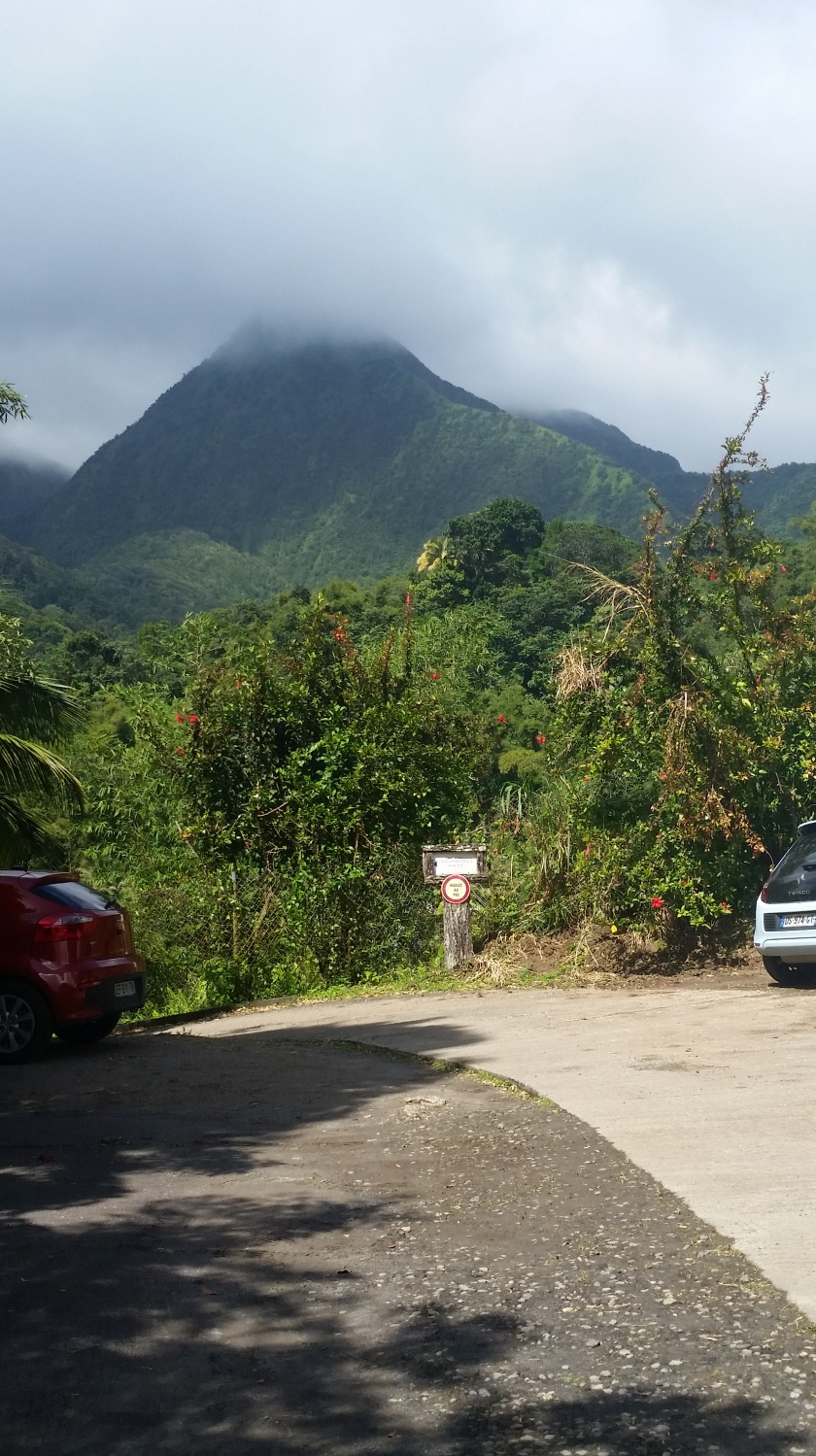 Mountain on Martinique
